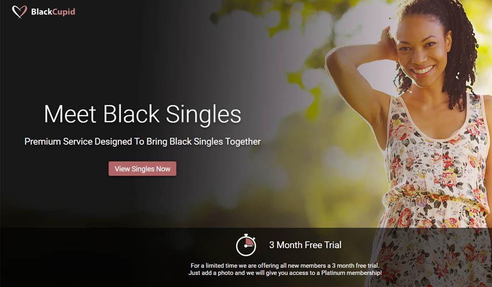 BlackCupid im Test 2021